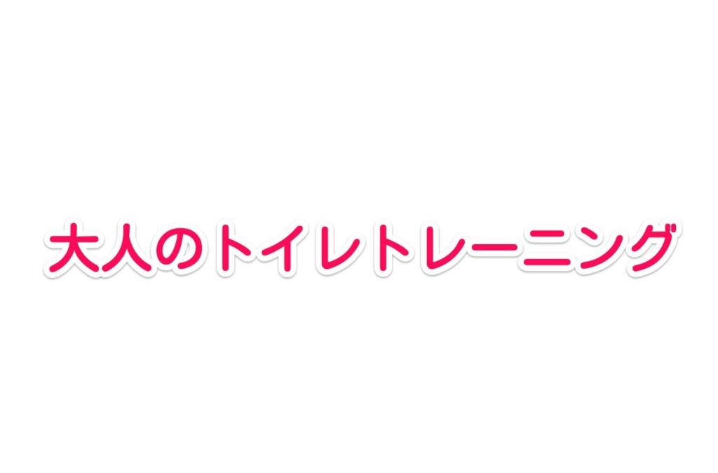 f:id:solidka2yuki:20170329070922j:plain