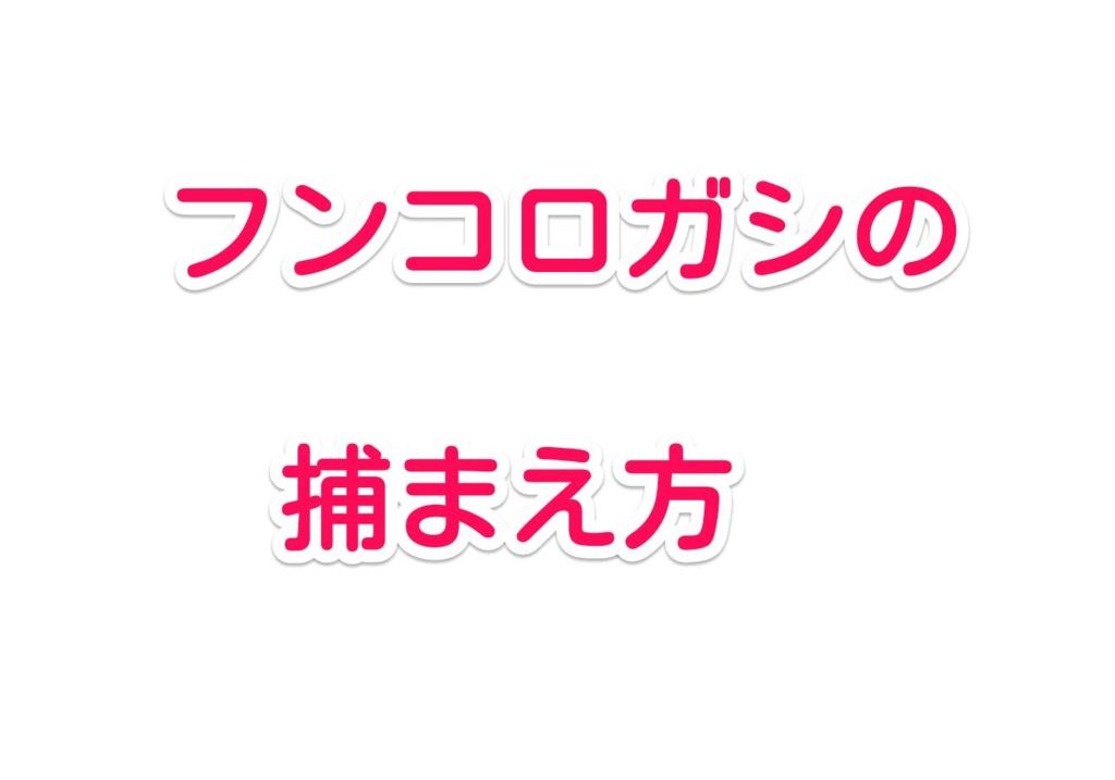 f:id:solidka2yuki:20170428073304j:plain
