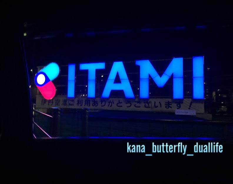 f:id:solo-butterfly:20210314032722j:plain