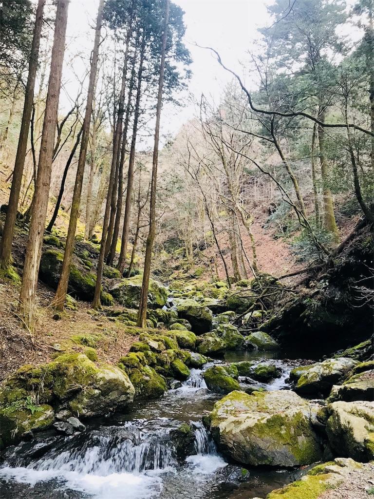 白岩渓流園の上流側の景色