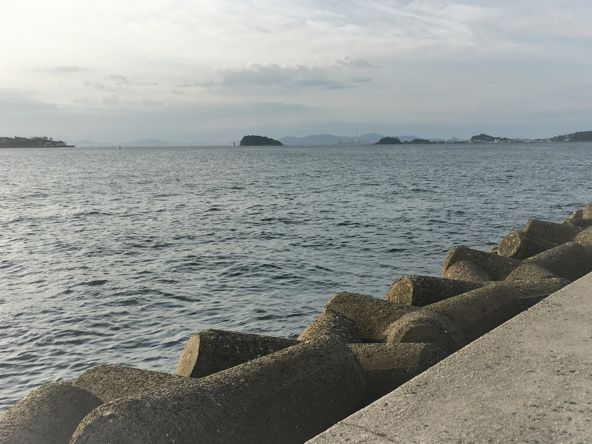 師崎周辺の釣りポイント