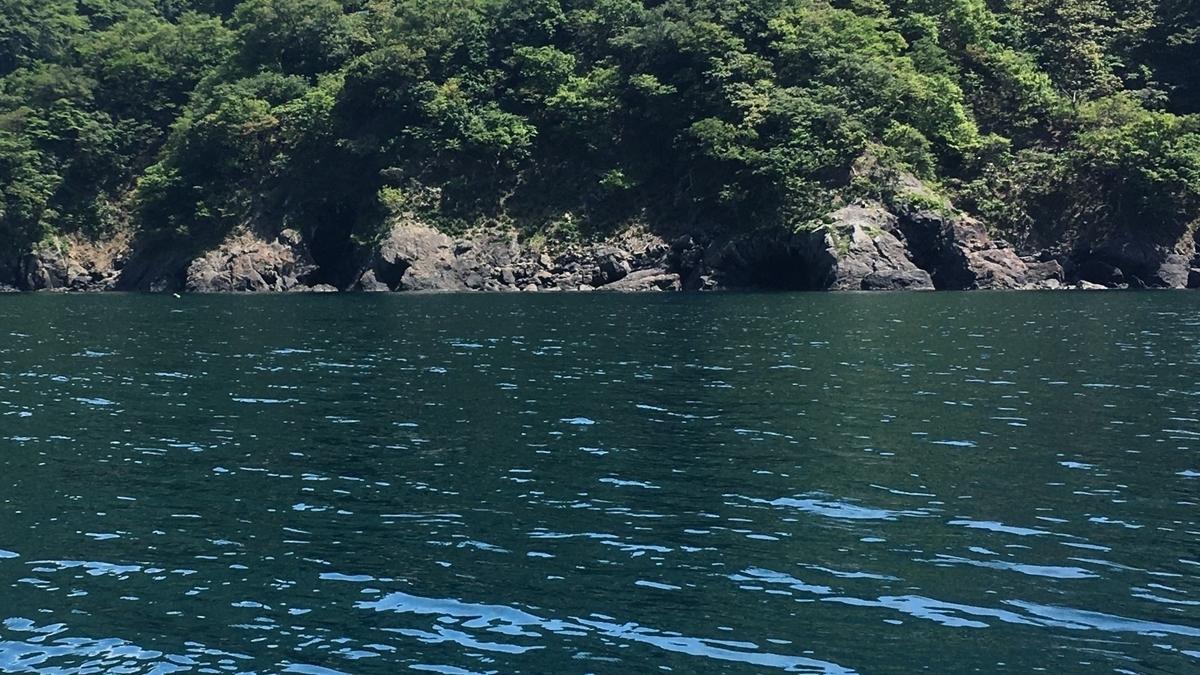 若狭湾の水深15mポイントでは幼魚が入れ食い