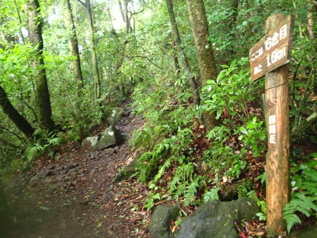 登山途中の写真7