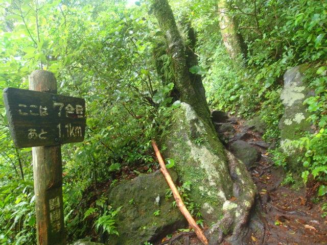 登山途中の写真8
