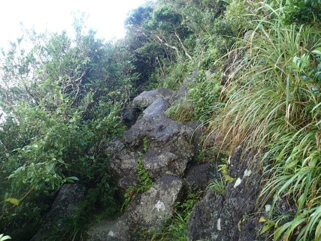 登山途中の写真9