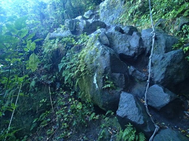 登山途中の写真14