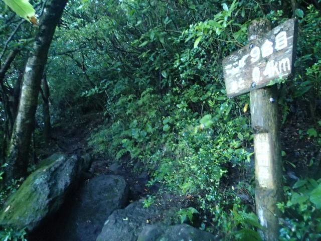 登山途中の写真16