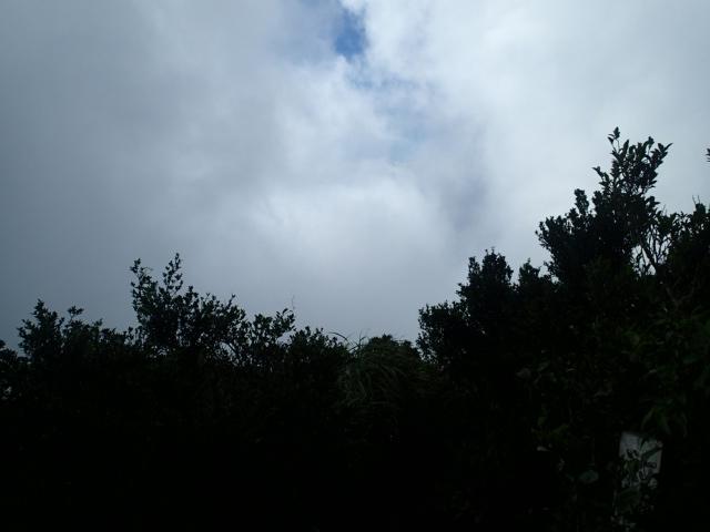 山頂の写真4