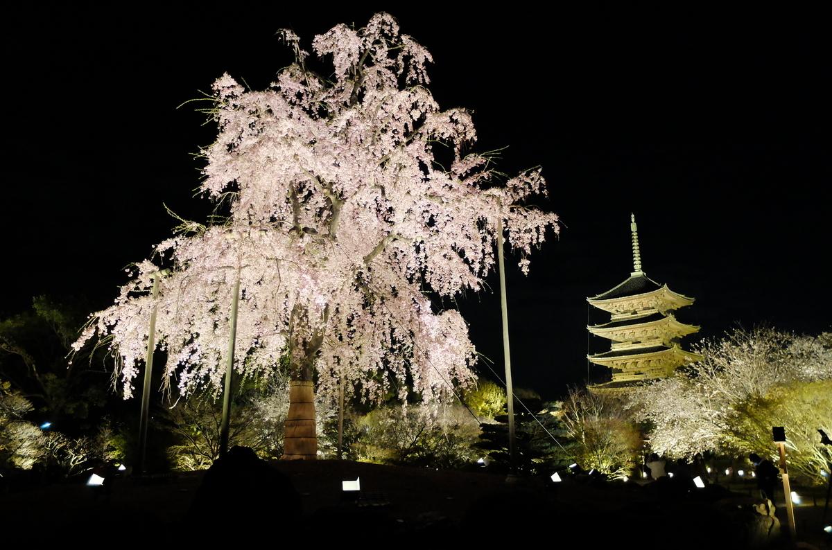 京都 東寺 ライトアップ 花見 六孫王神社