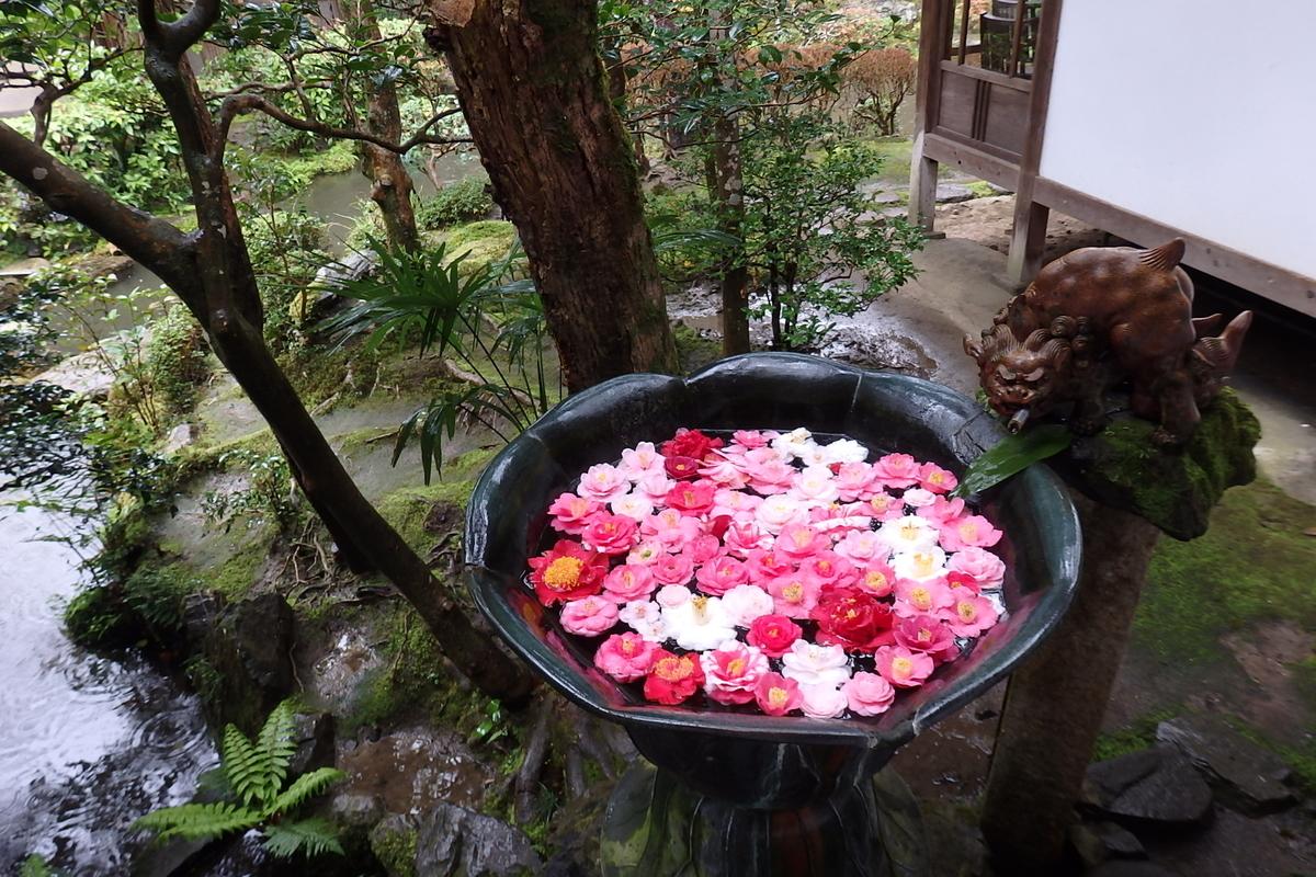 哲学の道 京都 法然院