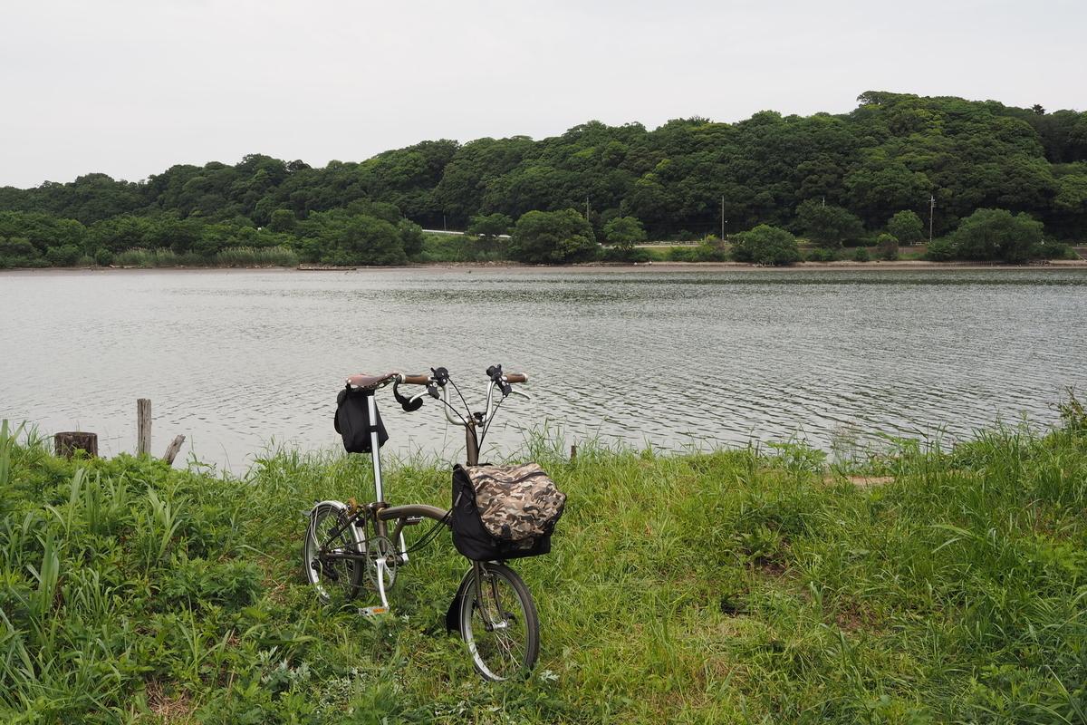 江戸サイ 江戸川CR