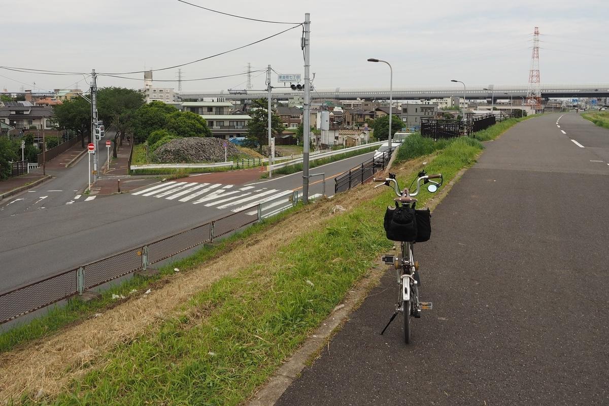 江戸サイ 江戸川CR 水元公園