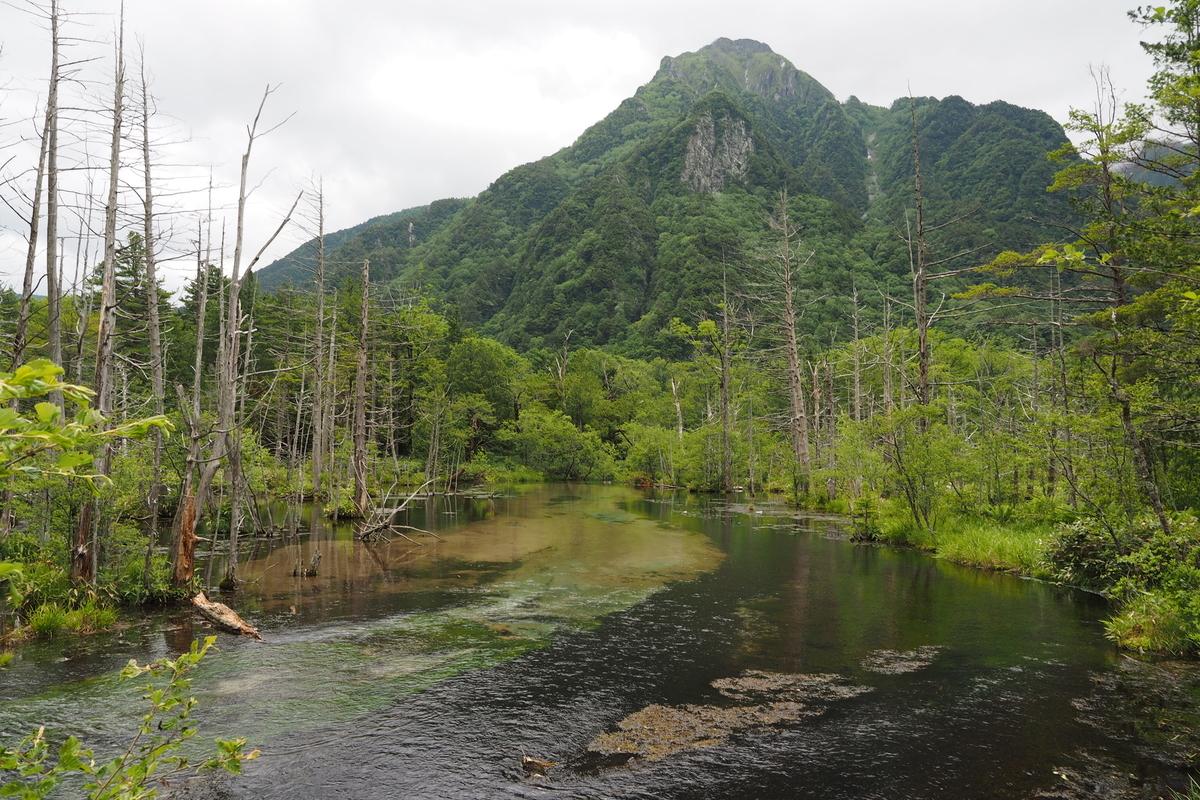 上高地 小梨平 ソロキャンプ 徒歩キャンプ 岳沢湿原