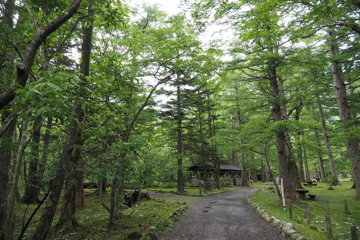 上高地 小梨平 ソロキャンプ 徒歩キャンプ 散策