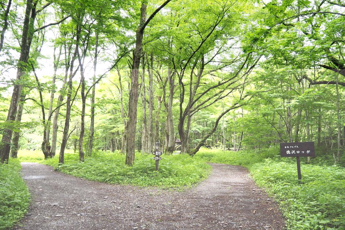 上高地 小梨平 ソロキャンプ 徒歩キャンプ 徳沢