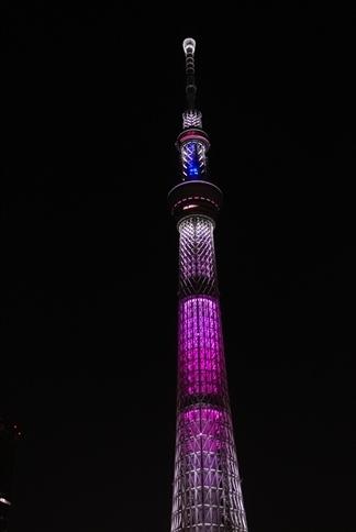 夜桜ツリー【舞】