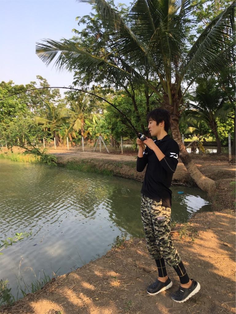 f:id:somakun:20190325213854j:image