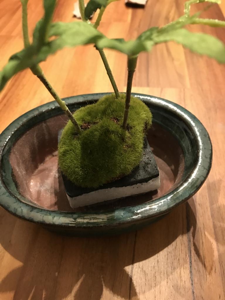 DIY 和風 インテリア 鉢と盆栽