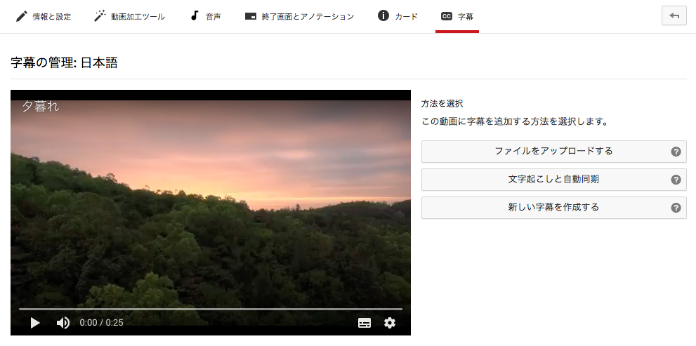 youtube SEO 字幕