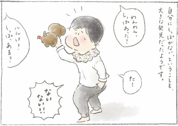 f:id:someyakaoru:20161105184133p:plain
