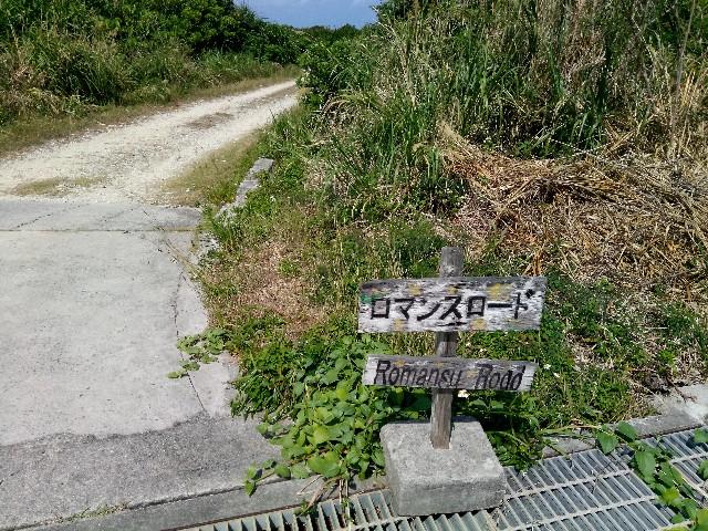 f:id:somutamu_musume3:20200318130553j:image