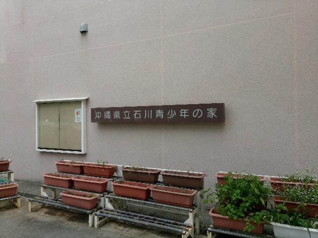 f:id:somutamu_musume3:20200318131844j:image