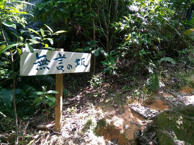 f:id:somutamu_musume3:20200318132619j:image