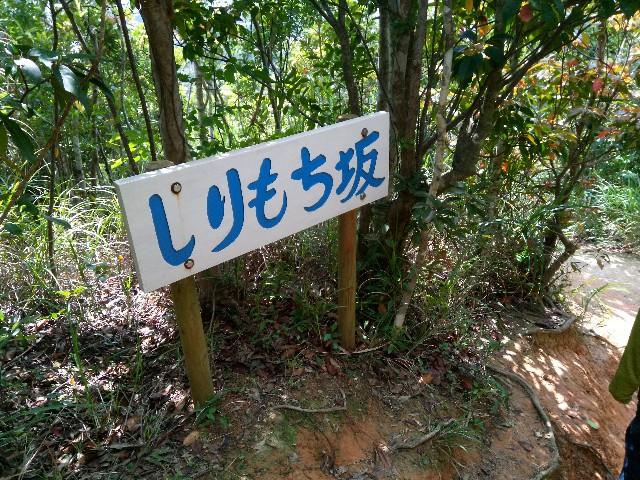 f:id:somutamu_musume3:20200318132852j:image