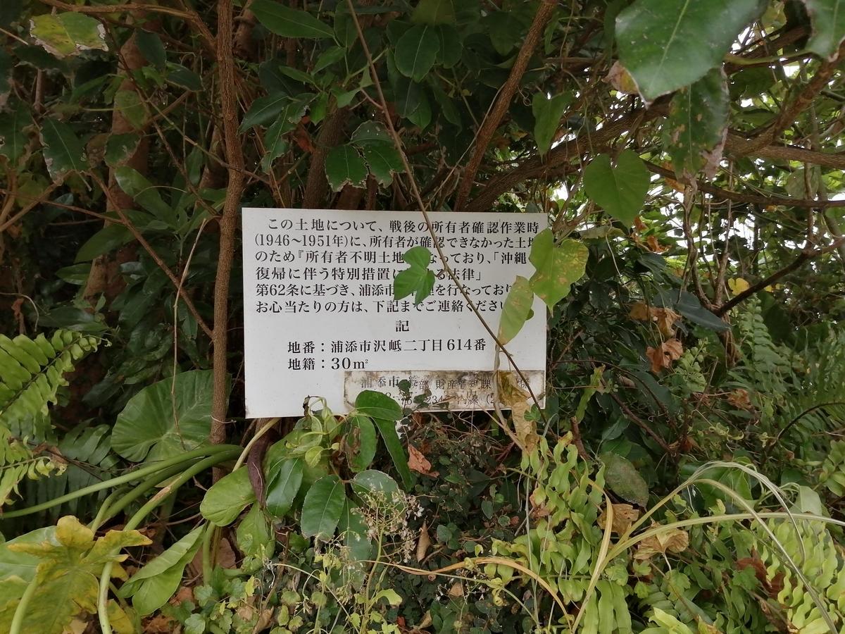 f:id:somutamu_musume3:20210329221223j:plain