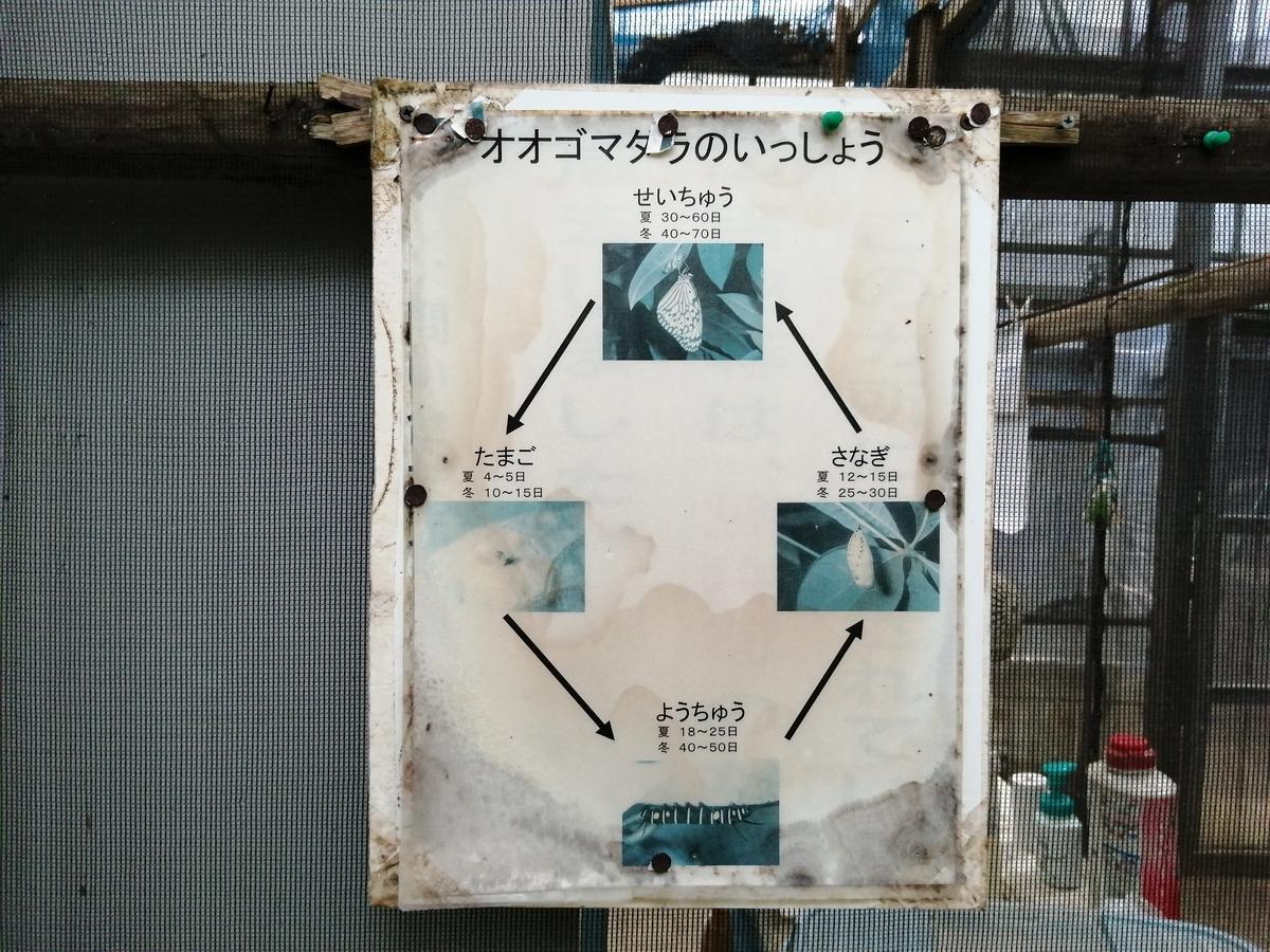 f:id:somutamu_musume3:20210507184507j:plain