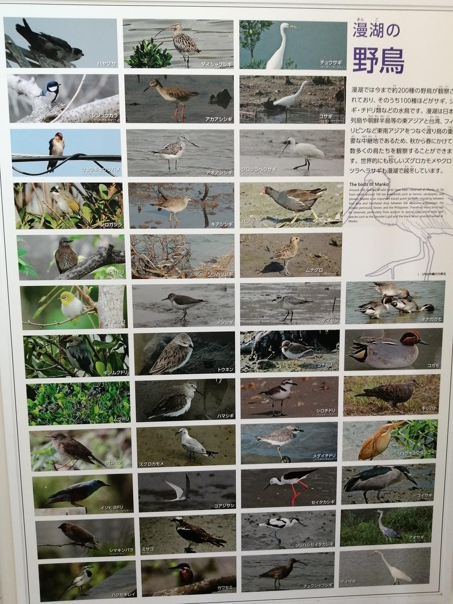 f:id:somutamu_musume3:20210513205627j:plain