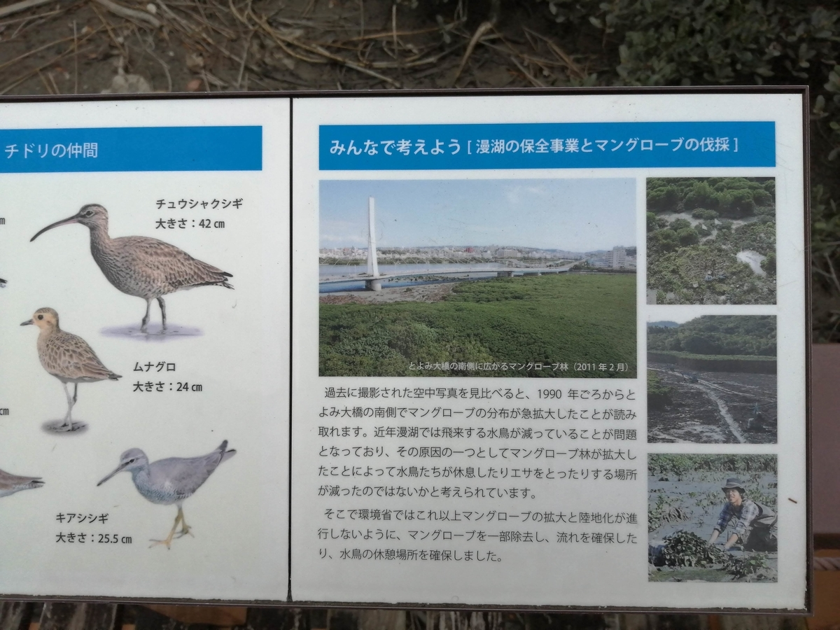 f:id:somutamu_musume3:20210513210234j:plain