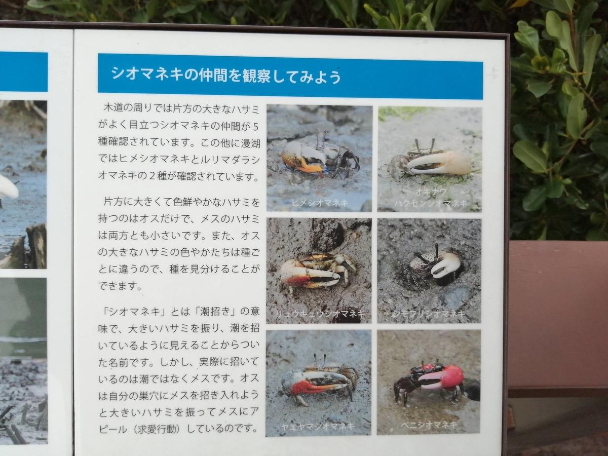 f:id:somutamu_musume3:20210513210305j:plain