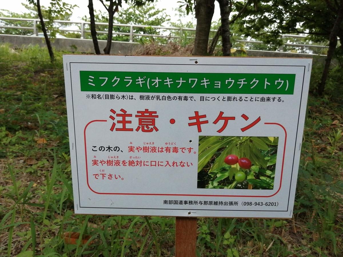 f:id:somutamu_musume3:20210513211106j:plain