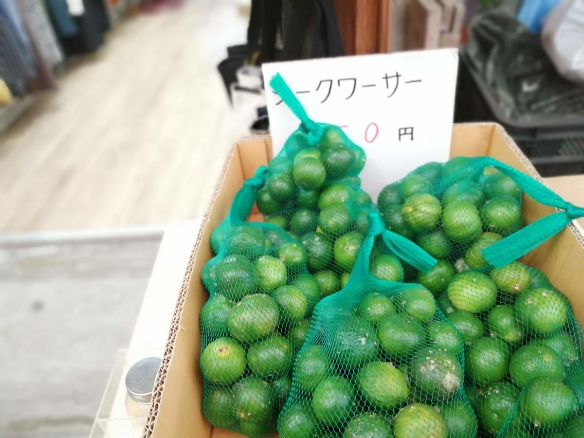 f:id:somutamu_musume3:20211006192519j:plain