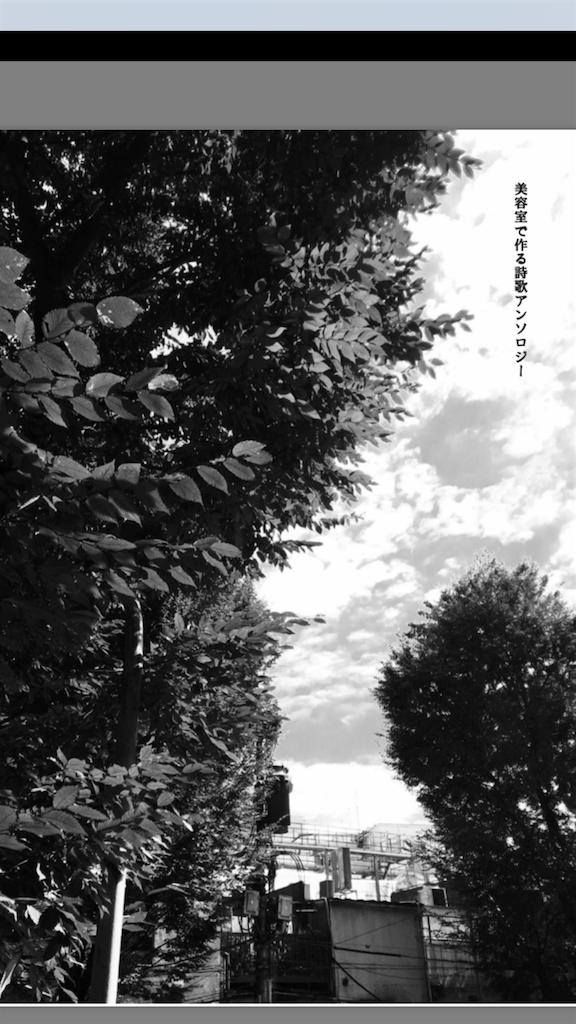 f:id:sona_hisa:20170429235024p:image
