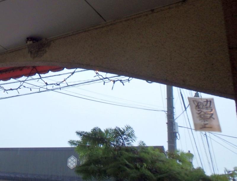 カラス侵入禁止の表示。その近くではツバメが子育て中