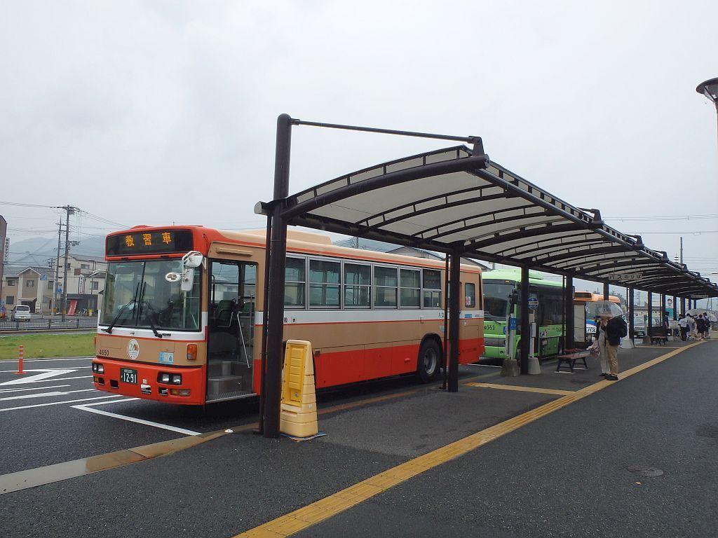 手前から順に、神姫バスの教習車、ていじゅうろう、てくてくバス