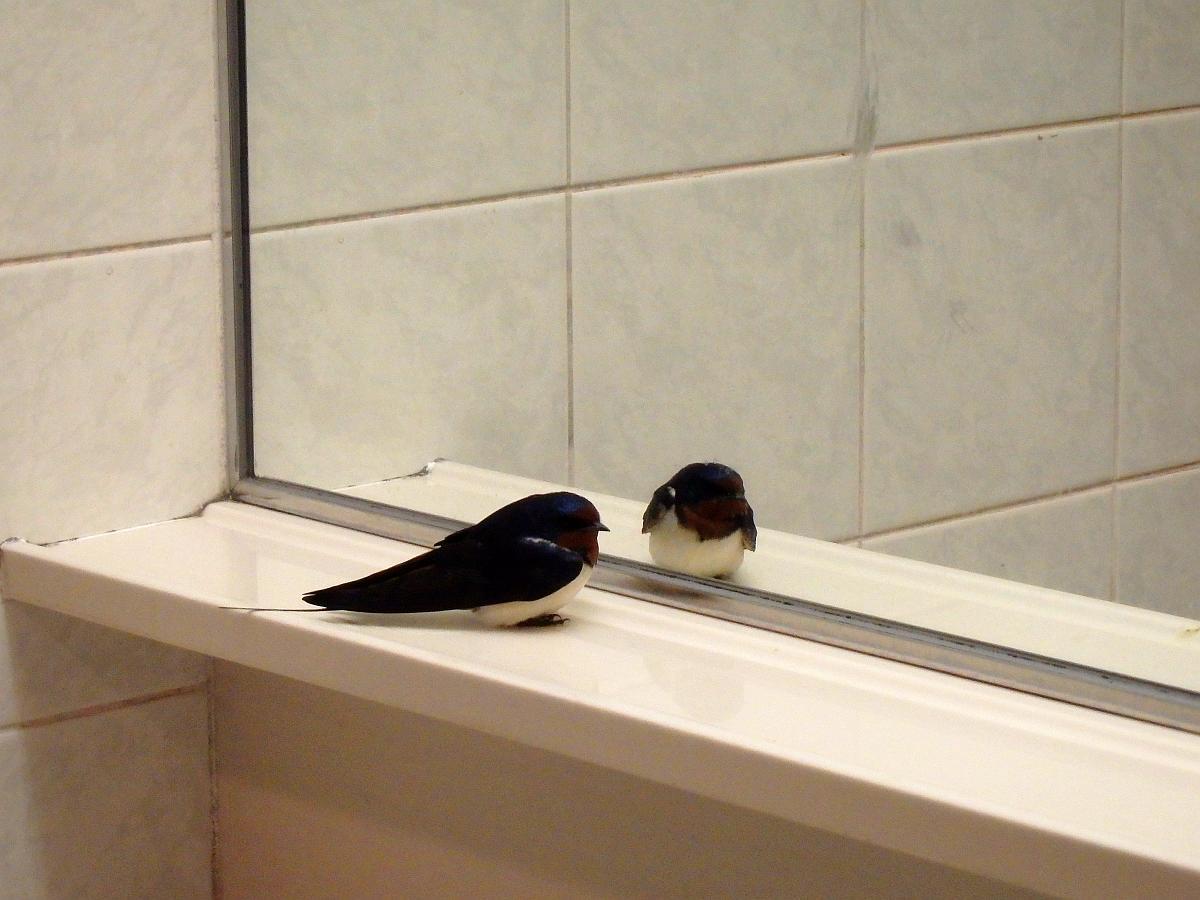 宿毛駅構内トイレにて