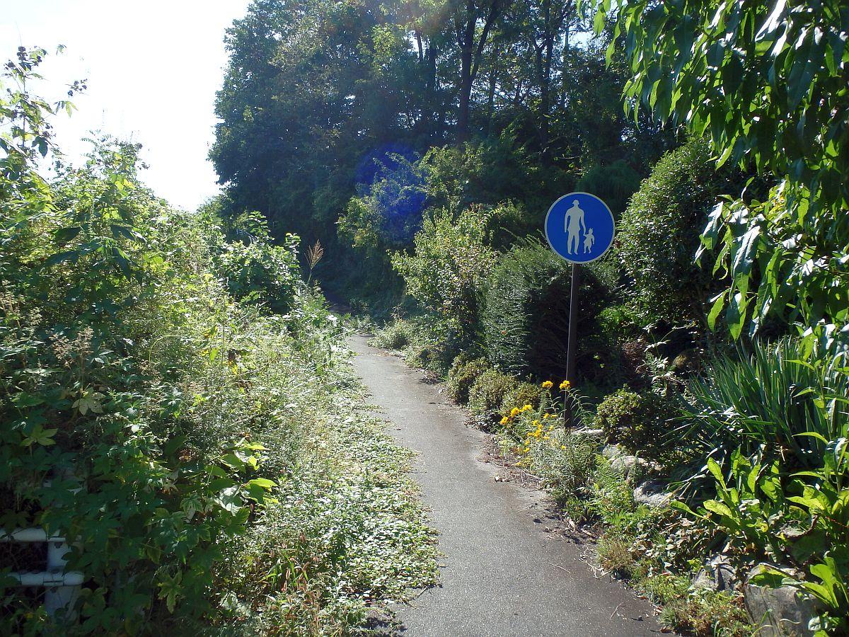 狭い道と歩行者専用の道路標識