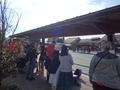 [バス停][駅]五合目行バスを待つ外国人