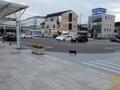 [駅][いきもの]二本松駅前ロータリーと猫