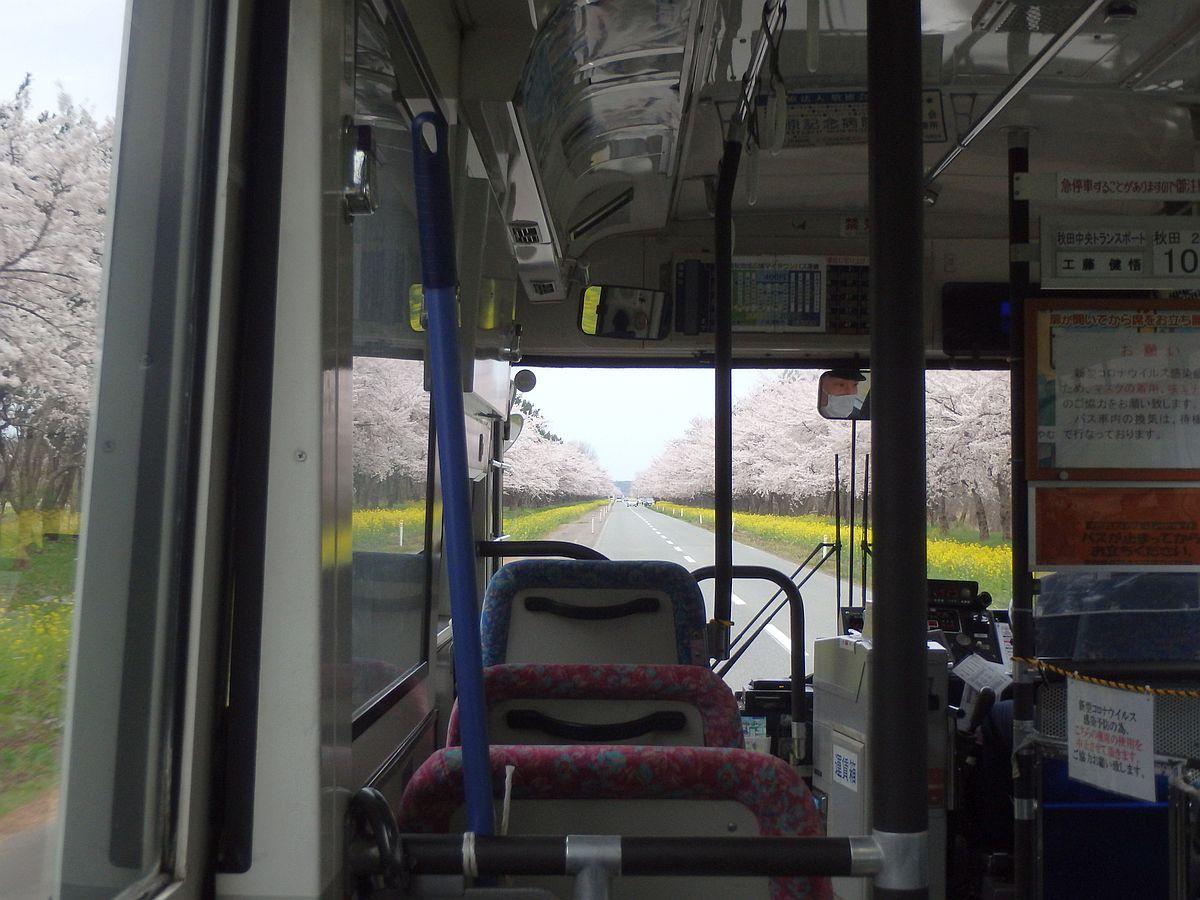 南秋地域広域マイタウンバス車内から見た菜の花ロード