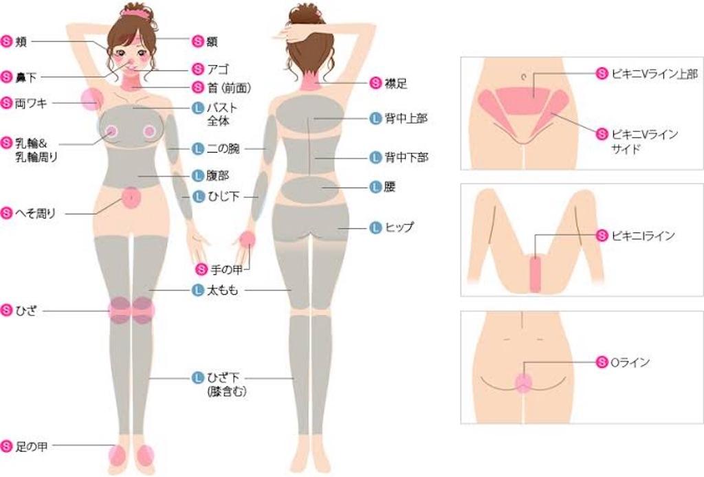 f:id:sophia-japan:20190109005319j:image