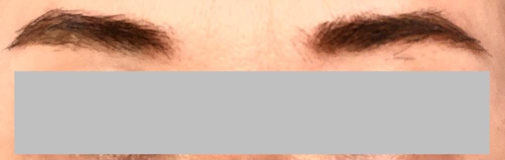 f:id:sophy365:20210201105217j:plain