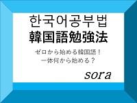 f:id:sora-rara:20190616114758j:plain