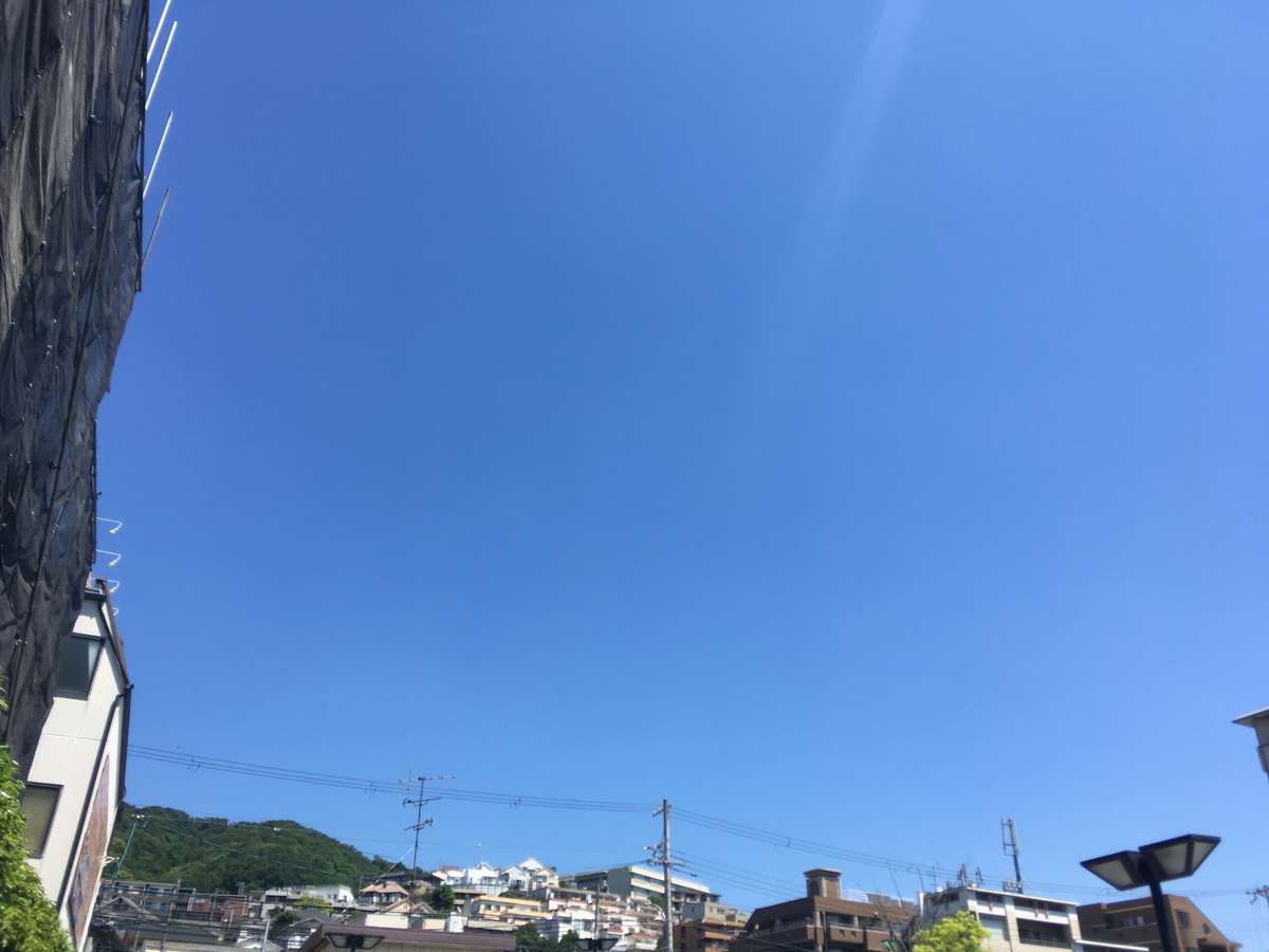 f:id:sora-umi-inu-watashi:20210607204629j:plain