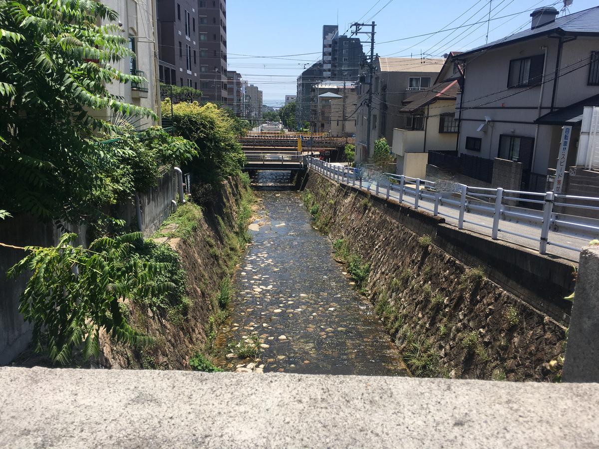 神戸市東灘区の天上川