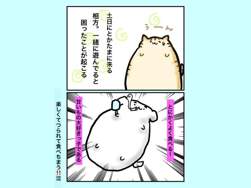 f:id:sorachi2019:20210718141107p:plain