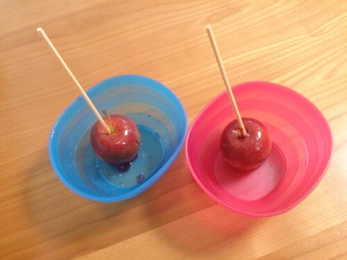 お祭りのりんご飴